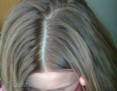 Chlodny Sredni Blond Jak Uzyskac Forum Szafa Pl
