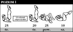 ABS - perfekcyjny brzuch - ciąg dalszy