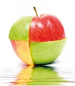Dlaczego jabłka to sprzymierzeńcy odchudzania?