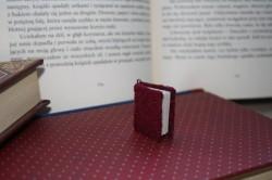 Mini książeczki ;)