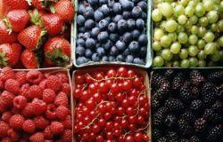 Zasady regularnego i zdrowego odżywiania