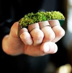 Ekologiczna biżuteria
