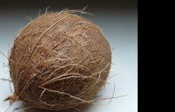 DIY: Świecznik z kokosa