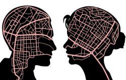 Mózgi kobiet i mężczyzn różnią się i uzupełniają?