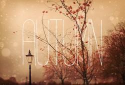 Hello Autumn, czyli jesienne wieczory i ranki!