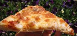 Przepis na pizzę z pizzeri