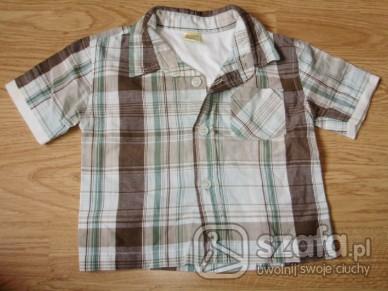 Koszulki, podkoszulki Super koszula 100%bawełny