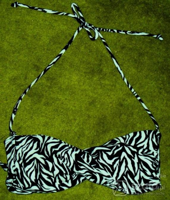 bikini zebra atmosphere
