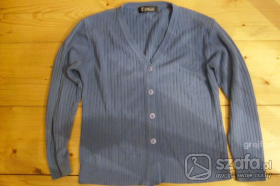 Swetry Sweterek niebieski