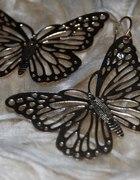 Złote motyle