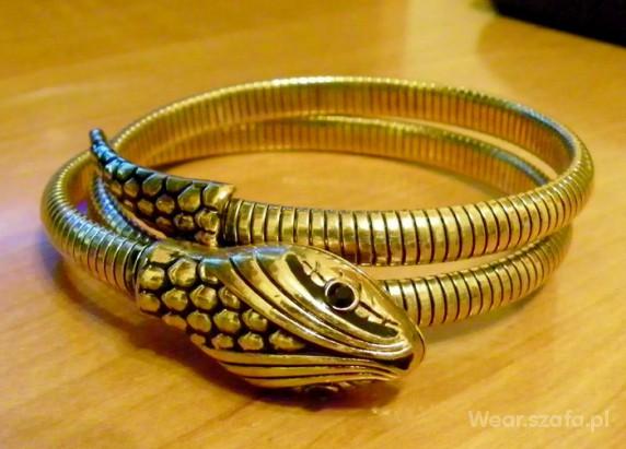 Złoty wąż...