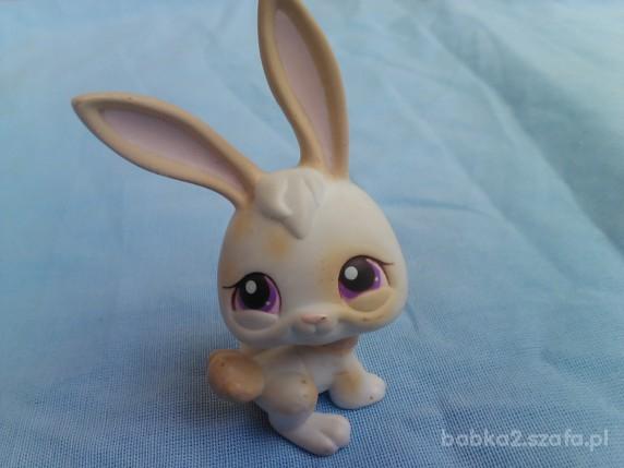 Zabawki ZWIERZAK LITTLEST PET SHOP