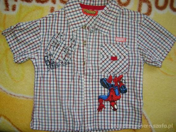 Koszulki, podkoszulki Koszula chłopięca SPIDERMAN 98