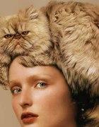 kitty lookbook