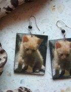 kolczyki kotki