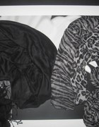HUSTY H&M PANTERKA CZERN...