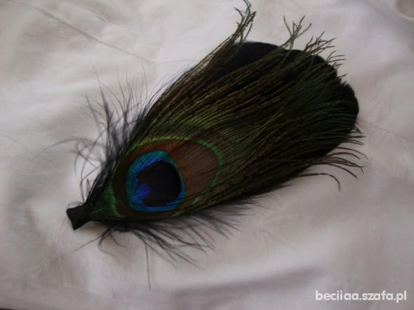 Ozdoby na włosy Pawie pióro na spince do włosów