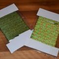 kolorowe sznurówki zielone