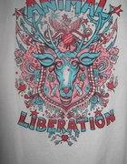 Nowa koszulka Aminal Liberation
