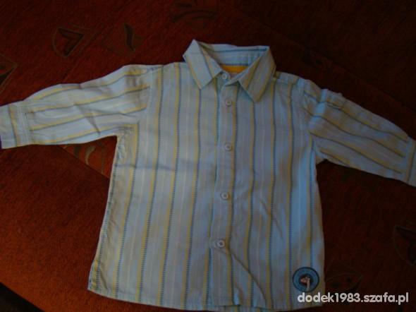 Koszulki, podkoszulki koszula 5 10 15