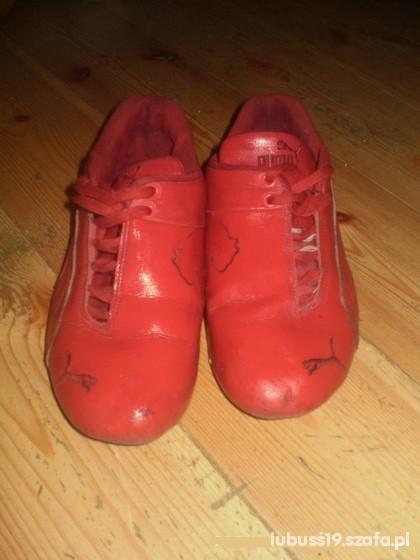 oryginalne buty przystojny autoryzowana strona adidasy puma