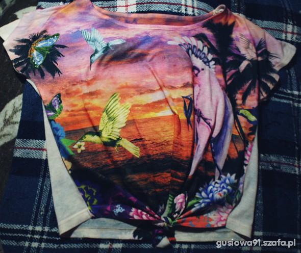 rajski t shirt