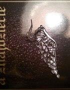 anielskie skrzydła z cyrkoniami srebrne
