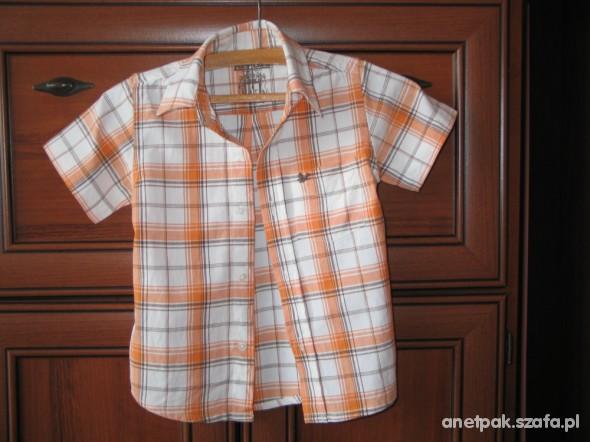 Koszulki, podkoszulki Elegancka koszula jak nowa rozm 104 lub 110