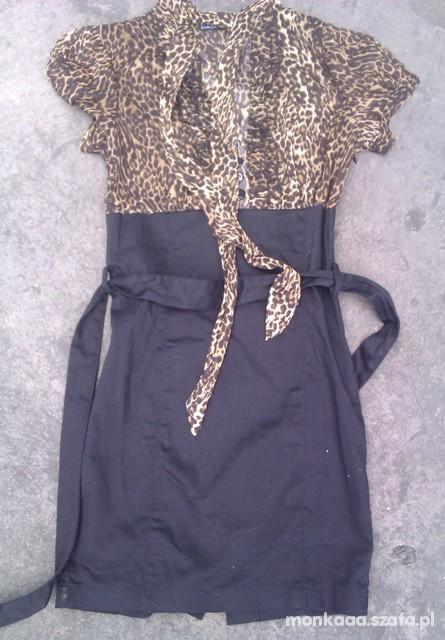 Suknie i sukienki Sukienka panterka Terranova S
