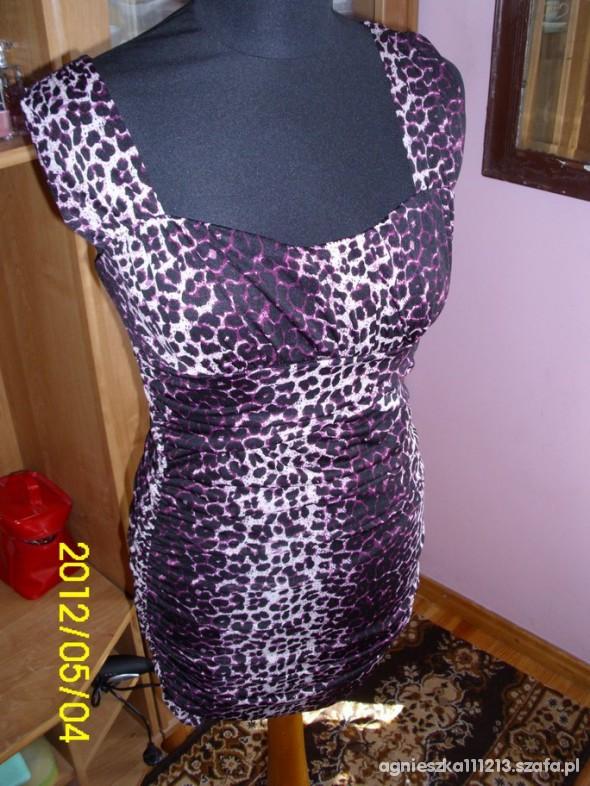 Suknie i sukienki Sukienka panterka panterkowa Amisu nowa