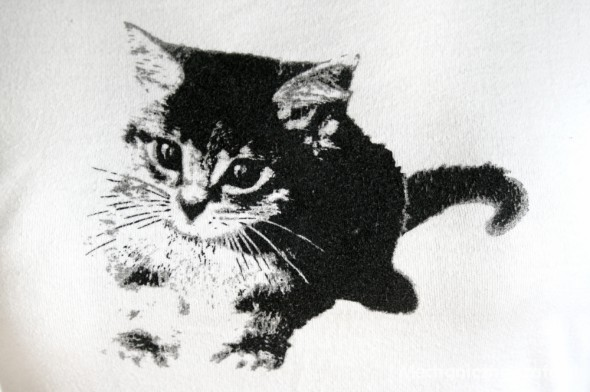 Słodki kociak 38 M dopasowany t shirt