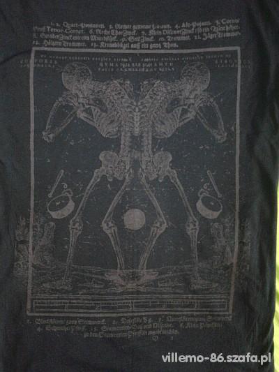 skeletonki
