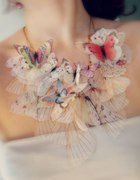 MOje ukochane motyle