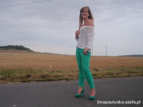 Mój styl zielonkawy raj
