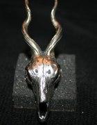 LAS skull ring