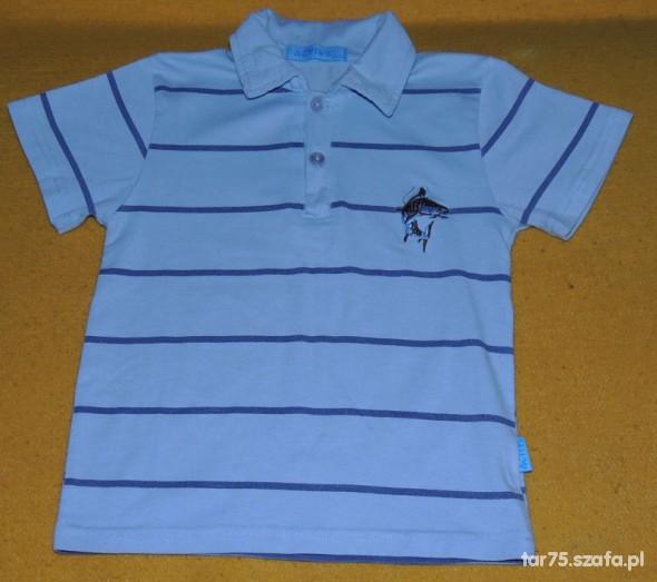 Koszulki, podkoszulki Koszulka polo