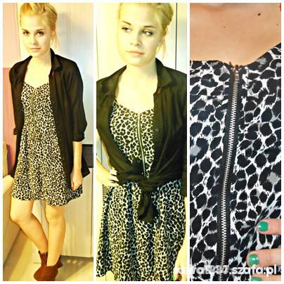 Suknie i sukienki sukienka zipp panterka
