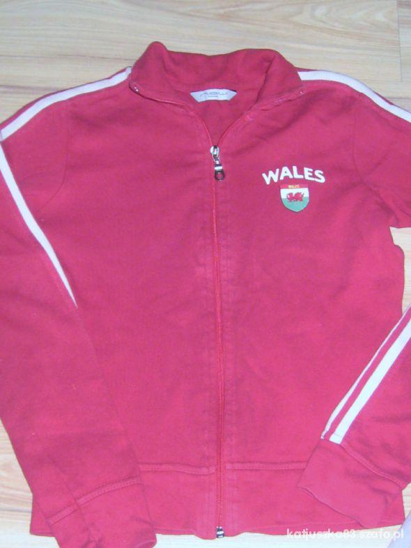 Bluzy bluza angielska Wales