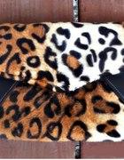 Kopertówka pantera