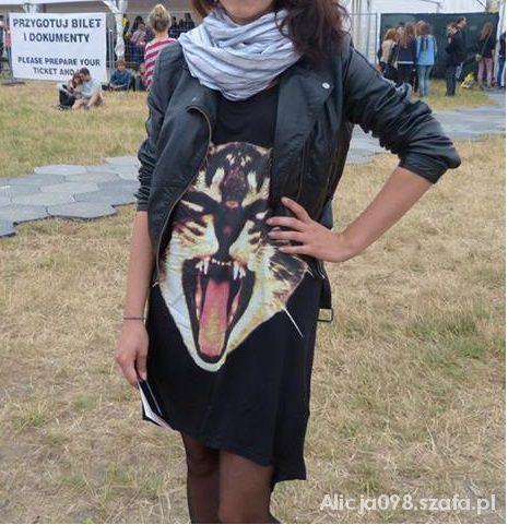 Ubrania Sukienka z kotem pilnie poszkukiwana