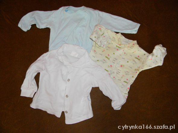 Koszulki, podkoszulki koszulki 62