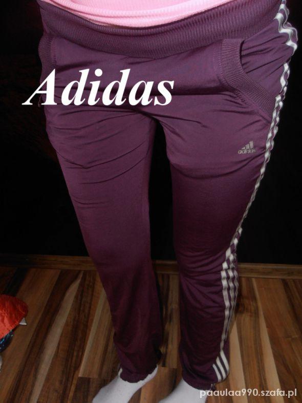 Adidas dres M fiolet