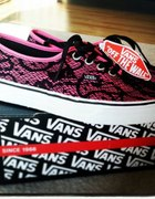 vans off the wall pink lace limited...