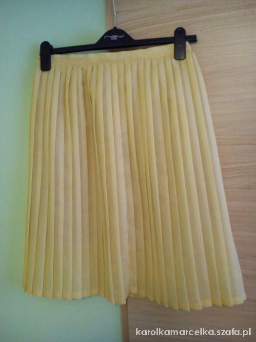 Spódnice plisowana spódnica pastelowy babab S M