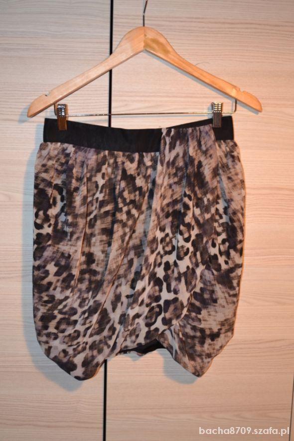 Spódnice Poszukiwana spódnica H&M panterka