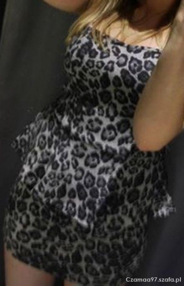 Ubrania Sukienka w panterkę z baskinią