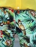 spodnie zara tropikalne papugi