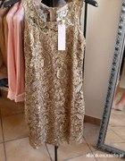 Koronkowa sukienka POSZUKUJĘ PILNIE...