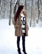 Winter leopard...