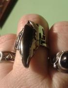 mroczny dziób kruka w srebrze...